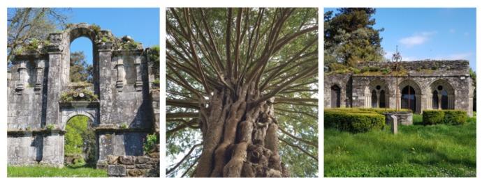 Journées du patrimoine 2020 - Visite libre du Site Abbatial de Saint Maurice