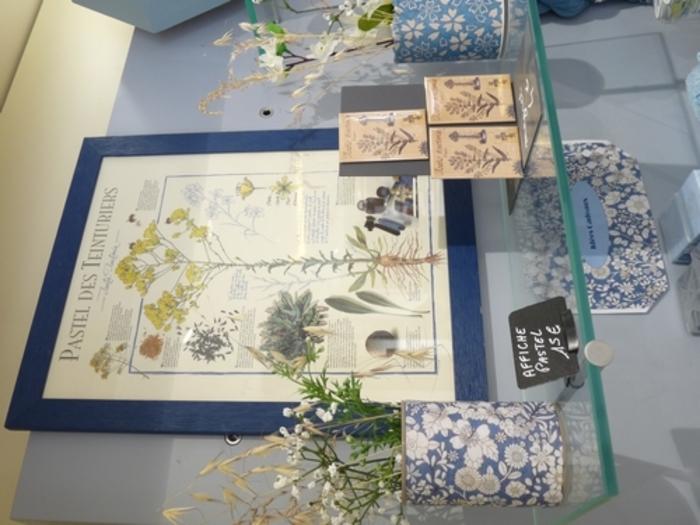 Rencontre avec des producteurs et artisans locaux et découverte autour du pastel, plante aux multiples usages et vertus : teinture, cosmétique..