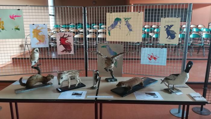 Journées du patrimoine 2020 - Annulé | POITIERS (86) : Découverte de la collection naturaliste du lycée Camille Guérin