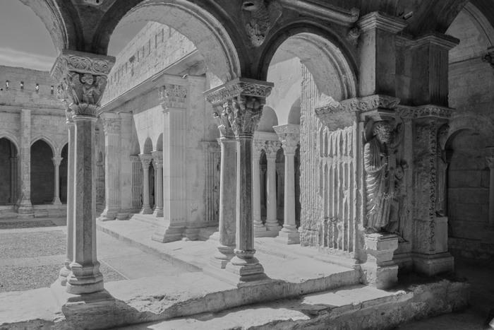 Journées du patrimoine 2019 - La relève du patrimoine - Visite guidée du cloître Saint-Trophime