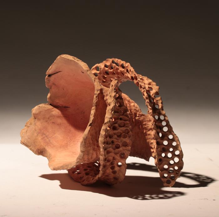 Journées du patrimoine 2020 - Chimère - Techniques et inspirations, de la racine à l'oeuvre
