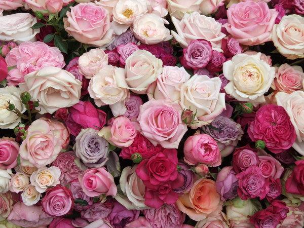 UNREP: A la découverte du métier de fleuriste