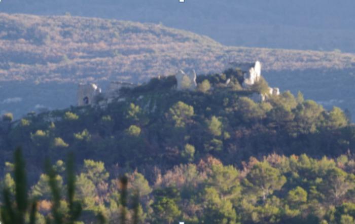 Journées du patrimoine 2020 - Annulé   Visite des ruines du  Vieux NANS
