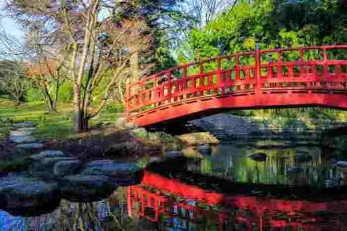 Journées du patrimoine 2020 - Visites guidées du jardin du musée Albert-Kahn