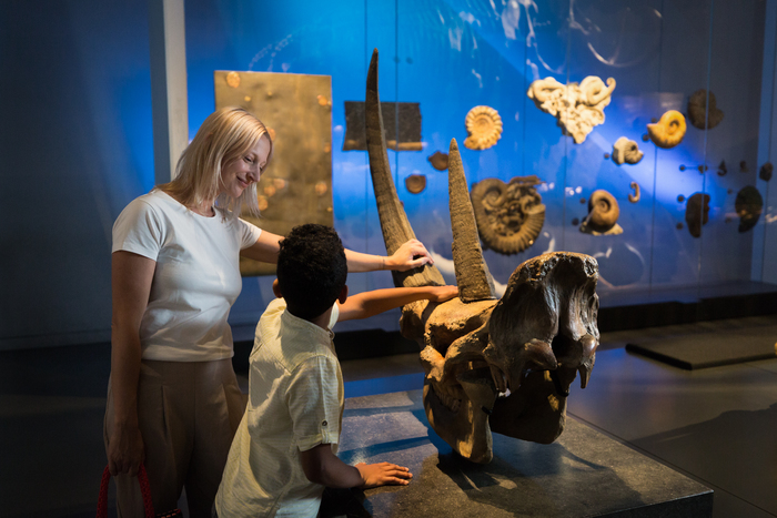 Journées du patrimoine 2019 - Découvrez les expositions du musée des Confluences