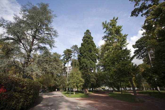 Journées du patrimoine 2020 - Visite guidée - Les arbres remarquables des Jardins de l'Europe