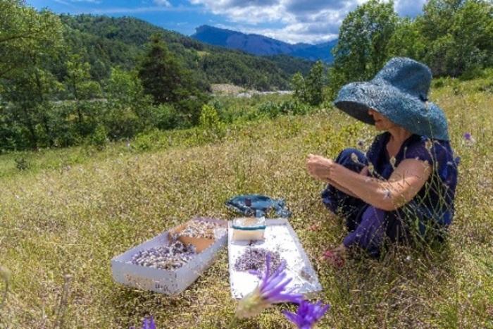 Journées du patrimoine 2020 - Rencontre autour de l'exposition Cylcle et graines : avant-cène