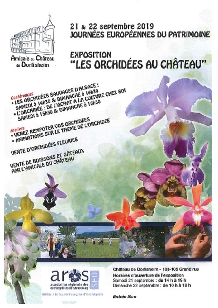Journées du patrimoine 2019 - Les orchidées au Château