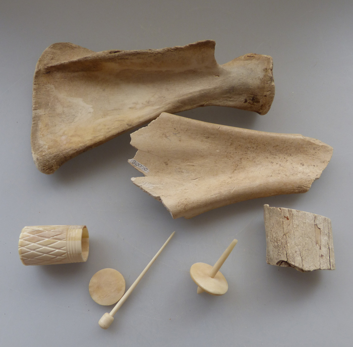 Journées du patrimoine 2020 - Atelier pour tous sur le métier d'archéozoologue
