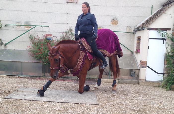Journées du patrimoine 2019 - Démonstration de dressage à cheval