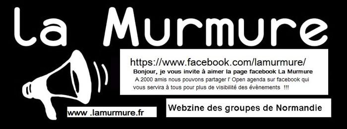 Invitation à aimer la page facebook LA MURMURE Webzine des Musiques actuelles de Normandie