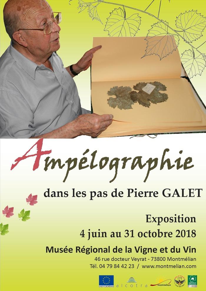 Journées du patrimoine 2018 - Visite libre de l'exposition «Ampélographie, dans les pas de Pierre Galet».