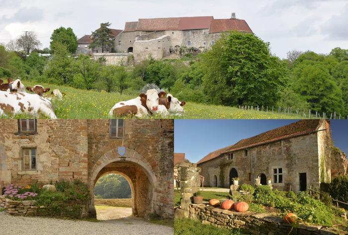Journées du patrimoine 2018 - Animations médiévales et visites au Château (XIIème siècle) de Montby