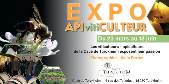 APIvitiCULTEUR... une expo qui fait le BZzz à la Cave de Turckheim !