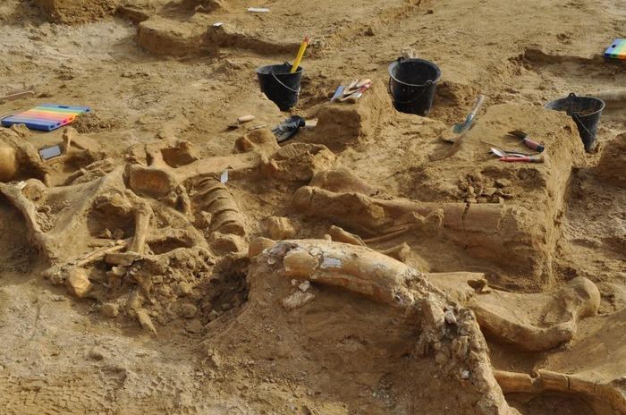 Journées du patrimoine 2018 - Archéologie et histoire d'un terroir