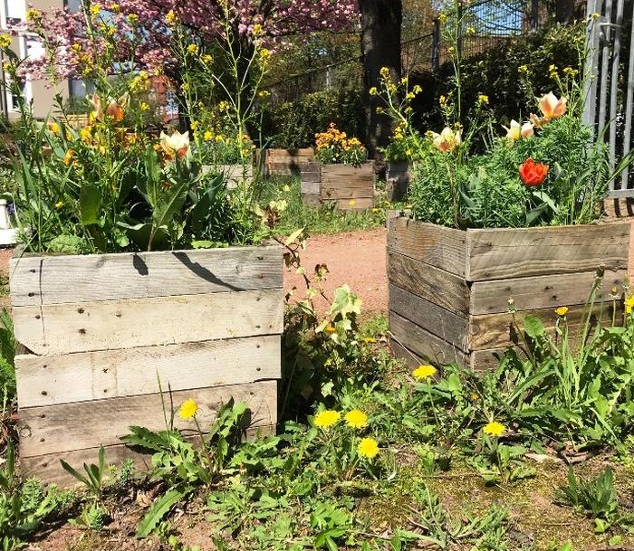Atelier Création de jardinières en palette