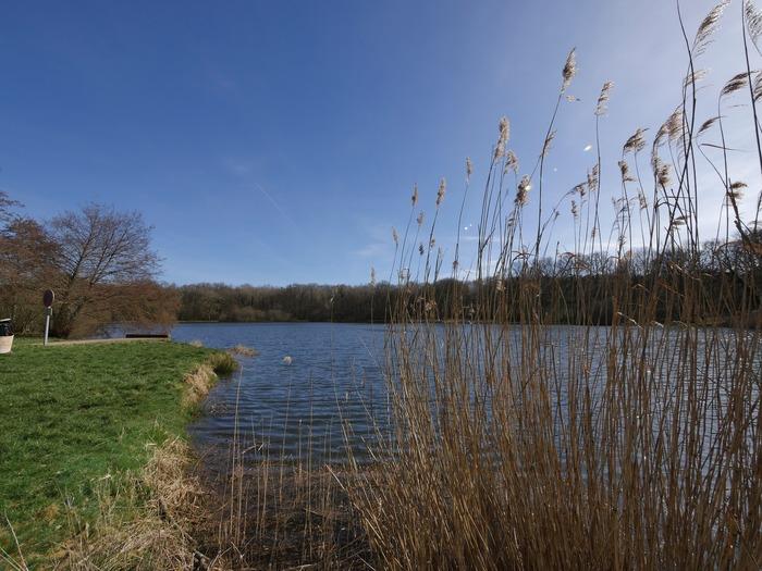 Journées du patrimoine 2018 - Balade commentée autour des étangs de Saint-Ange