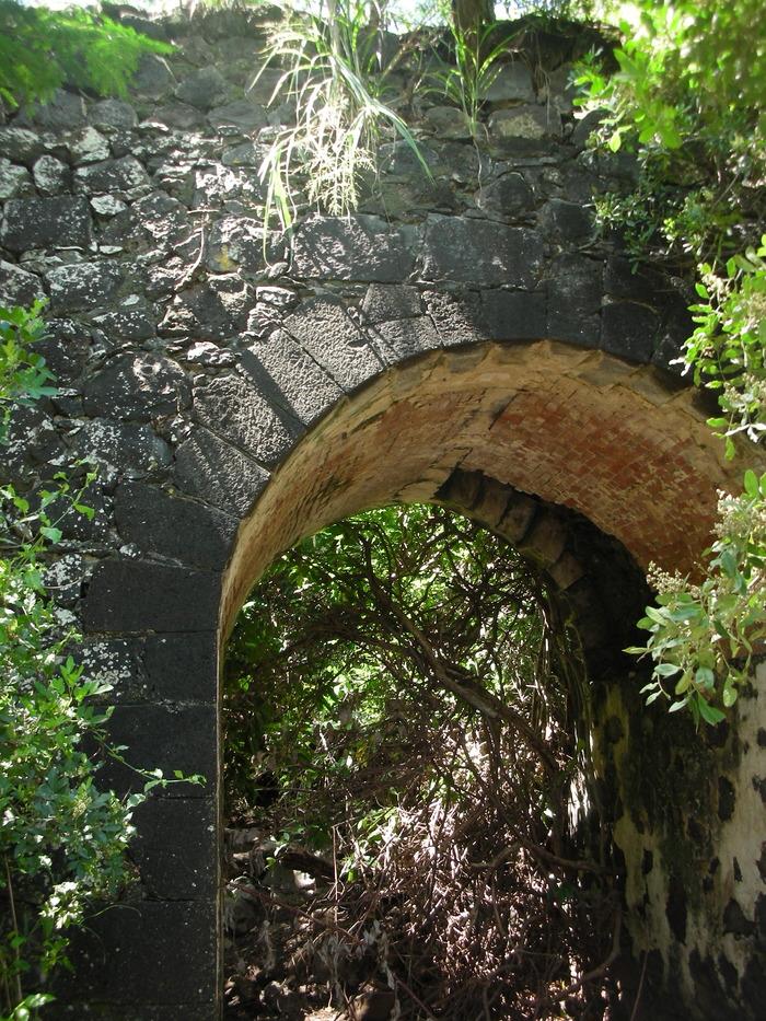 Journées du patrimoine 2018 - Balade dans bois Villèle