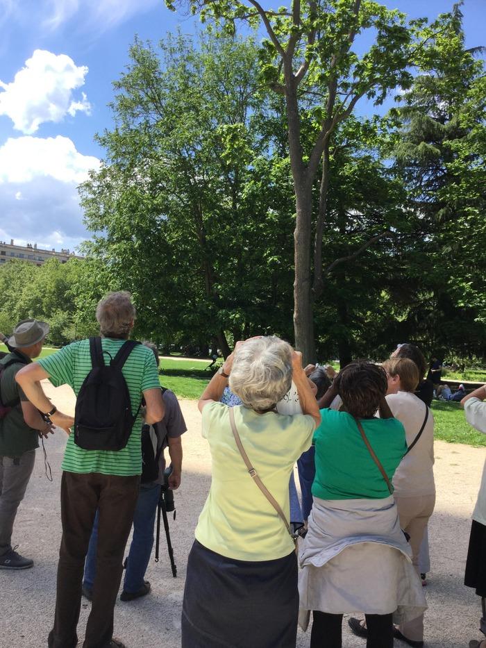 Journées du patrimoine 2018 - Balade à la découverte des oiseaux du jardin.