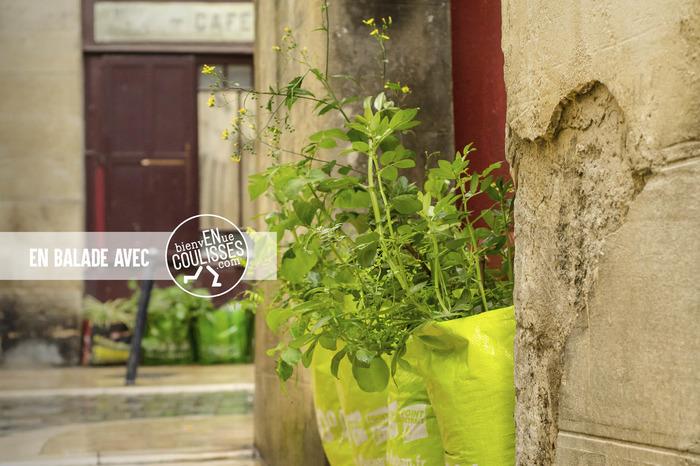 Balade urbaine: l'enVERT de Bordeaux, la consommation responsable à portée de tous