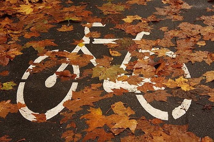 Balade vélo aux couleurs de l'automne à la Vallée aux loups