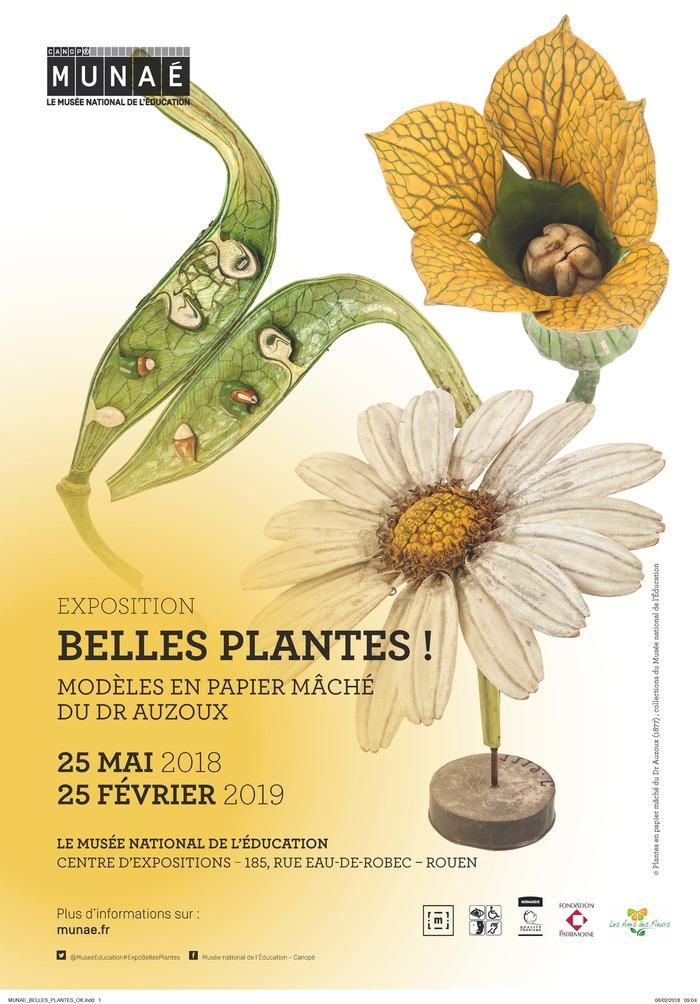 Belles plantes ! Modèles en papier mâché du Dr Auzoux