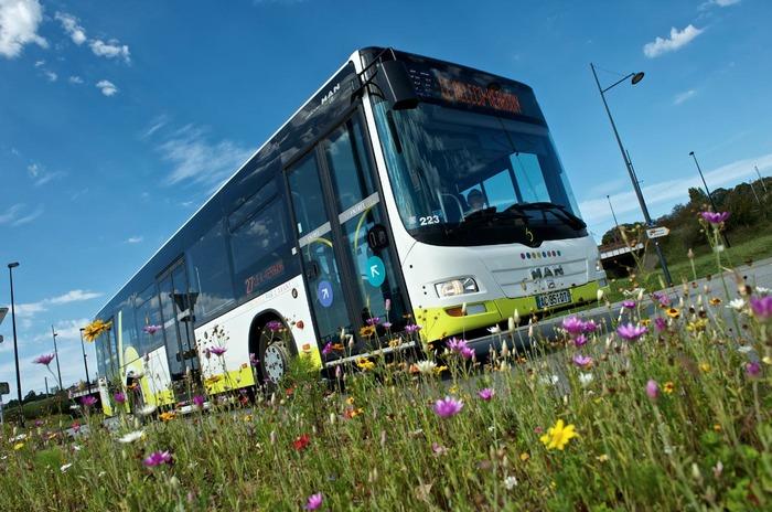 Journées du patrimoine 2017 - Bibus : Visite guidée de l'atelier de maintenance bus