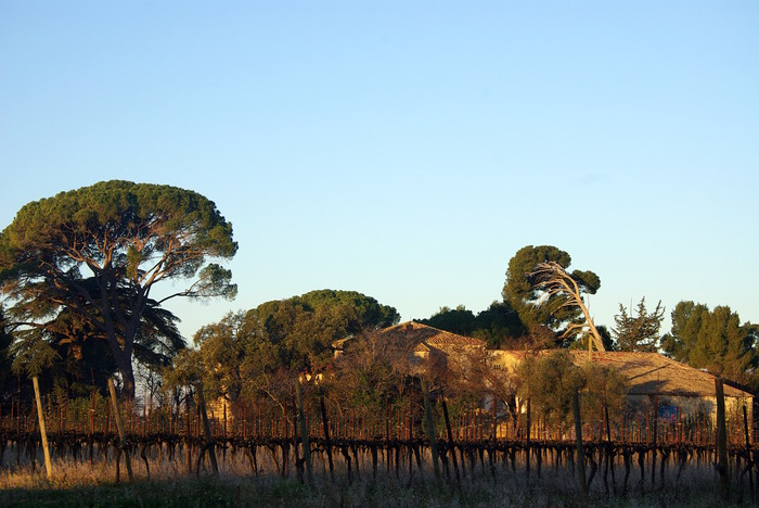 Journées du patrimoine 2018 - Chantier agroécologique participatif