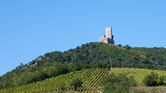 Journées du patrimoine 2020 - Visite guidée du château de l'Ortenbourg à Scherwiller