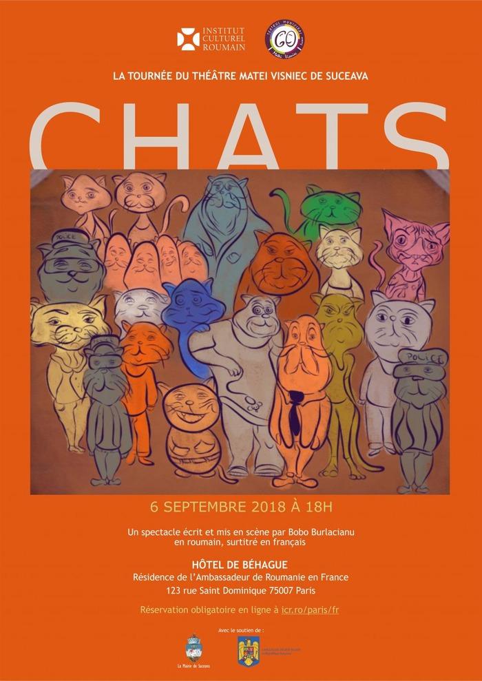 chat en ligne rencontres Roumanie