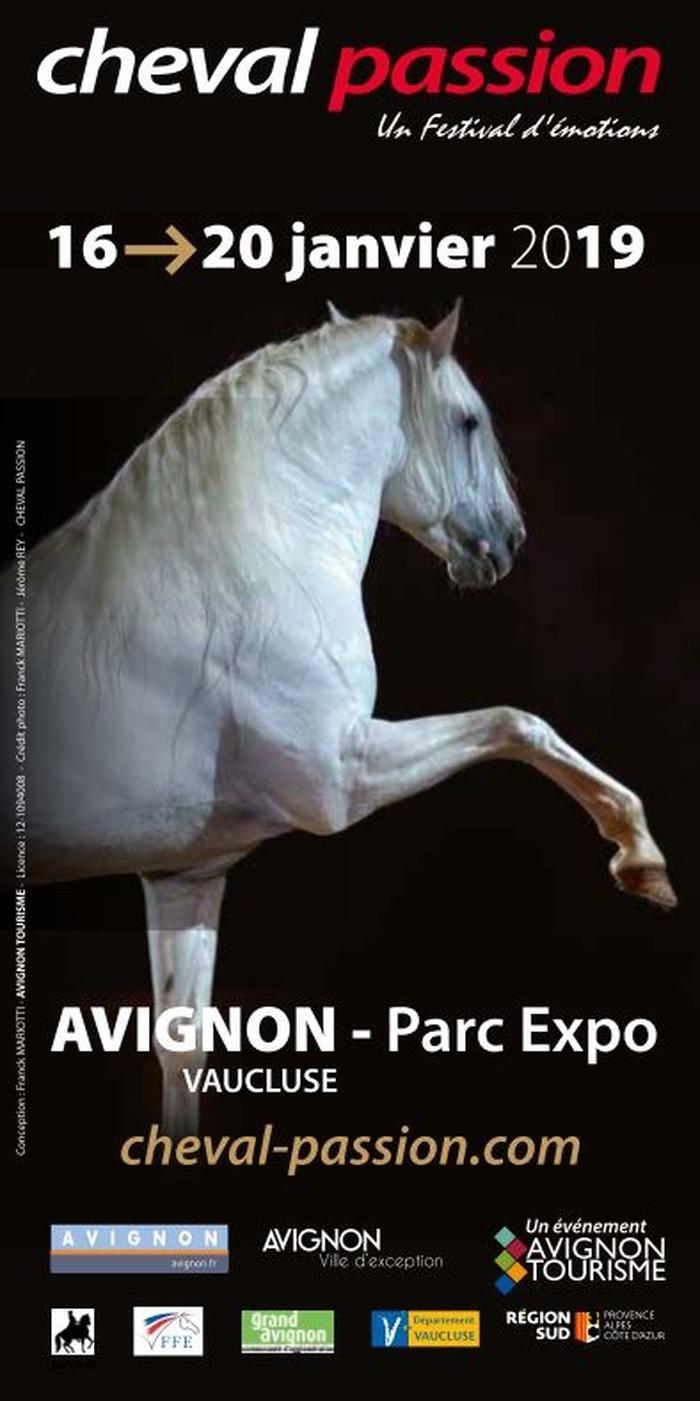 Cheval Passion, à Avignon (84)