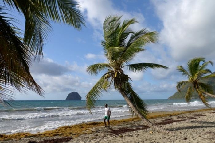 Cinédoc Martinique et Guadeloupe,