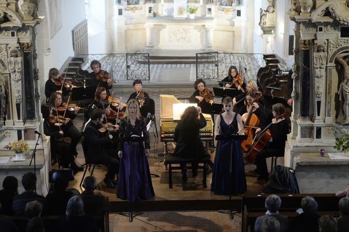 Crédits image : Ensemble Instrumental de la Mayenne