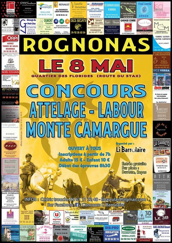 Concours Monte Camargue, Attelage et Labours Chevaux de Trait, à Rognonas (13)
