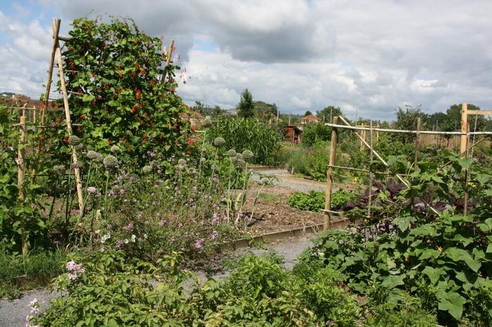 Journées du patrimoine 2017 - Conservatoire des Légumes Anciens du Béarn