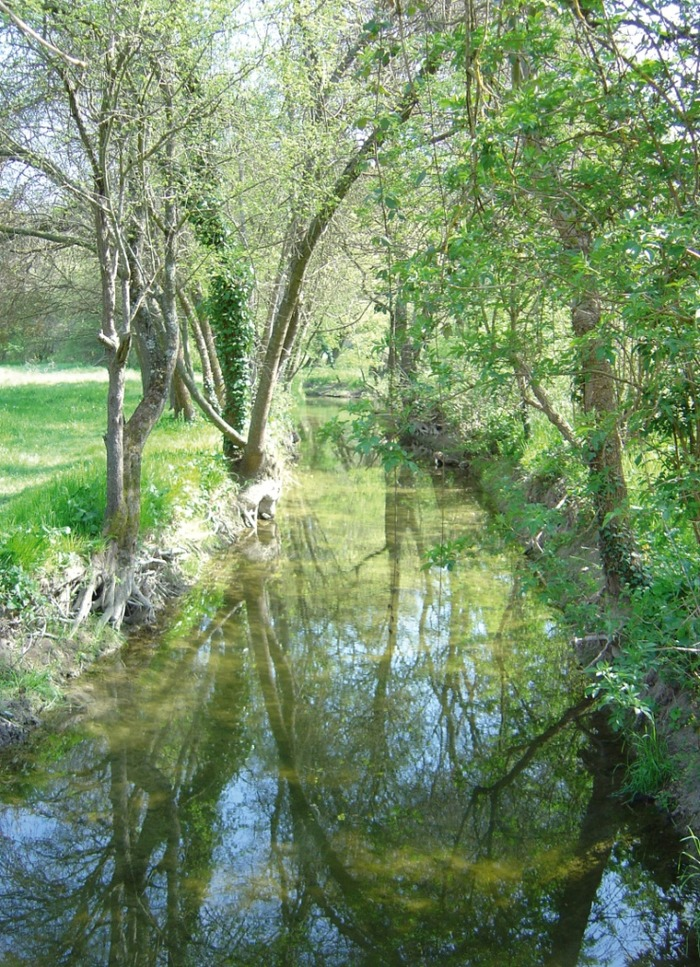 Journées du patrimoine 2018 - Conte, exposition et randonnée autour du thème La Forêt, patrimoine à préserver
