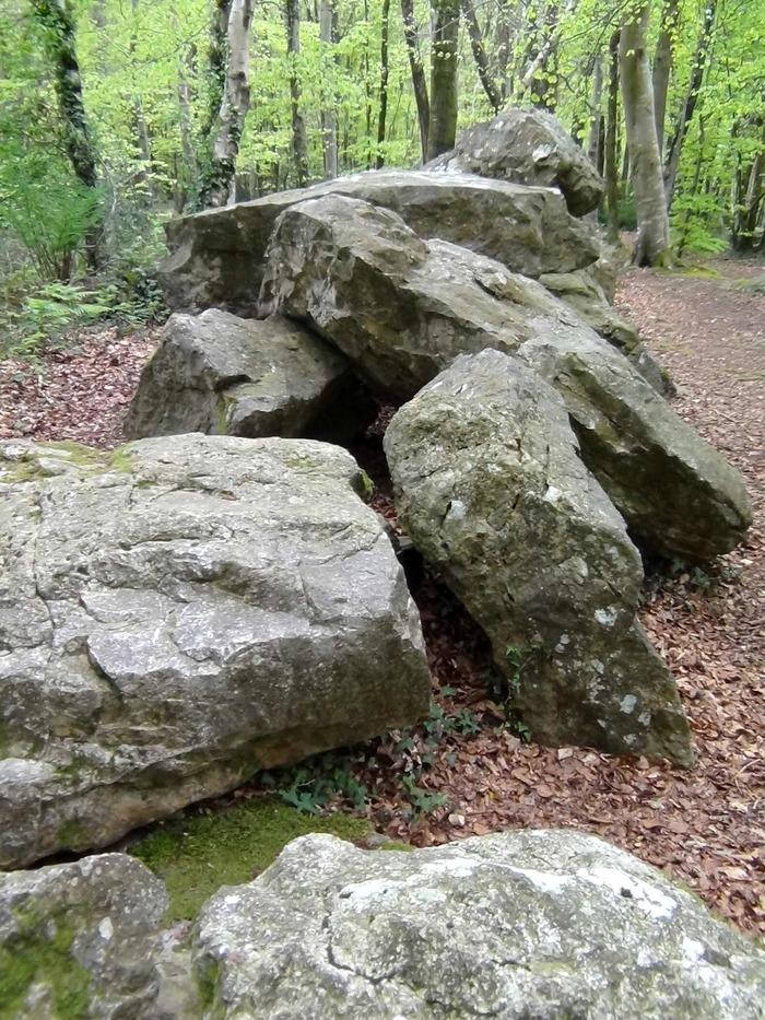 Journées du patrimoine 2018 - Visite du site du Bois des Roches, dans l'univers des légendes du Cotentin ancestral (Pays d'art et d'histoire du Clos du Cotentin)