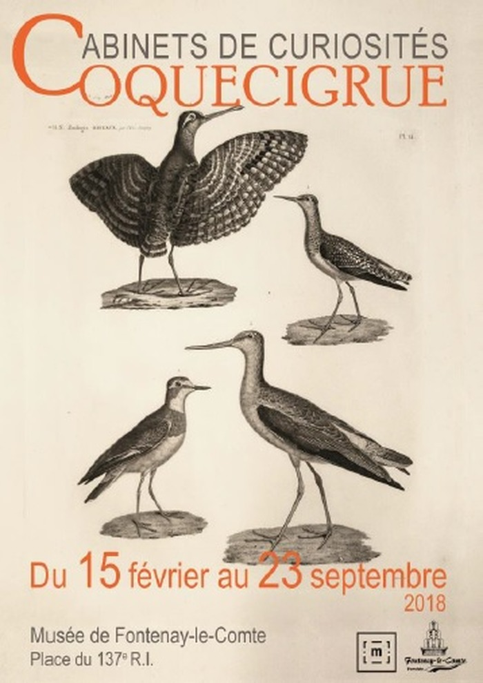 Journées du patrimoine 2018 - Coquecigrue par les élèves du Lycée Rabelais