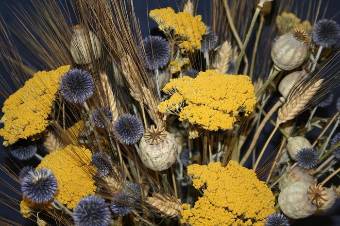 Journées du patrimoine 2017 - Couronnes de fleurs et de fruits de saison