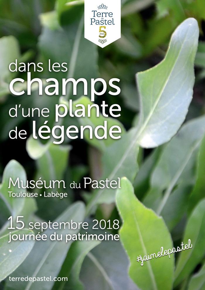 Journées du patrimoine 2018 - Dans les champs d'une plante de légende