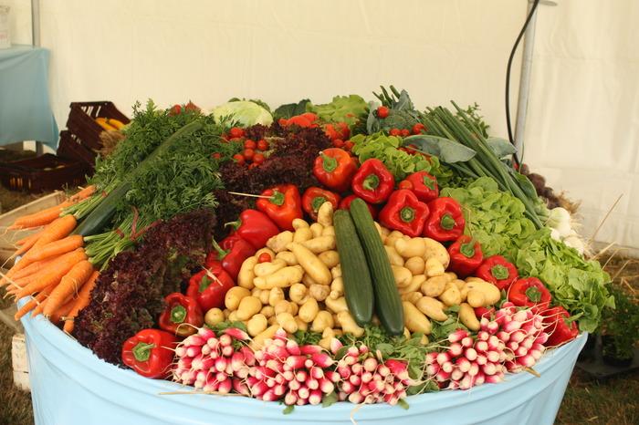 Journées du patrimoine 2018 - Découverte des plantes aromatiques et légumes