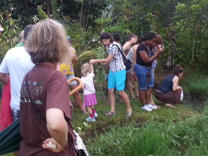 Journées du patrimoine 2018 - Découverte des plantes et fleurs de Guyane