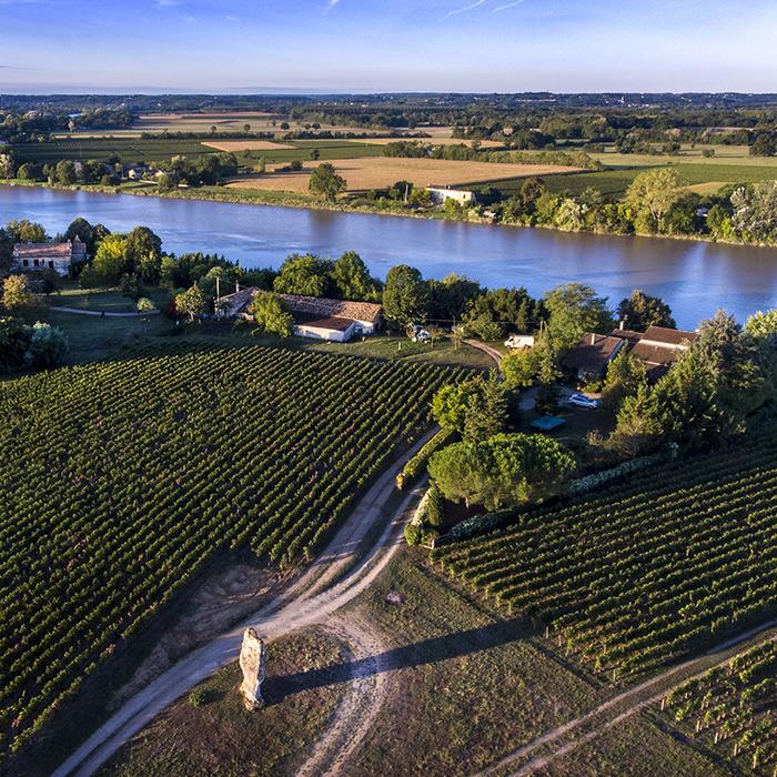 A la découverte des vins de Saint-Emilion