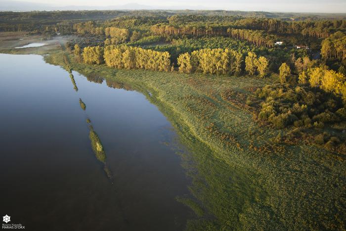 Journées du patrimoine 2018 - Découverte du patrimoine naturel du site Natura 2000 « Zones humides associées au Marais d'Orx »
