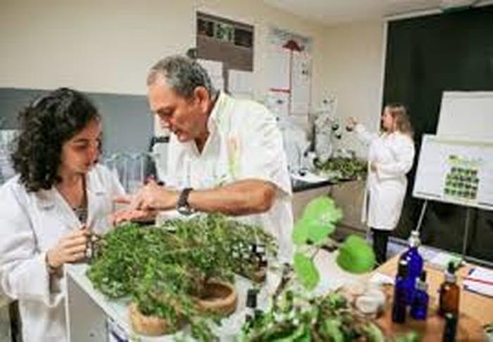 Journées du patrimoine 2018 - Découverte et dégustation des plantes endémiques et médicinales de la Réunion