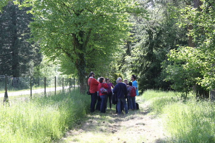 Journées du patrimoine 2018 - Découverte ludique et sensorielle de l'Arboretum d'Amance