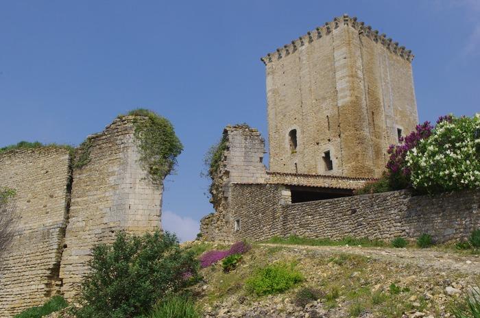 Journées du patrimoine 2017 - Visite libre du donjon de Moncontour