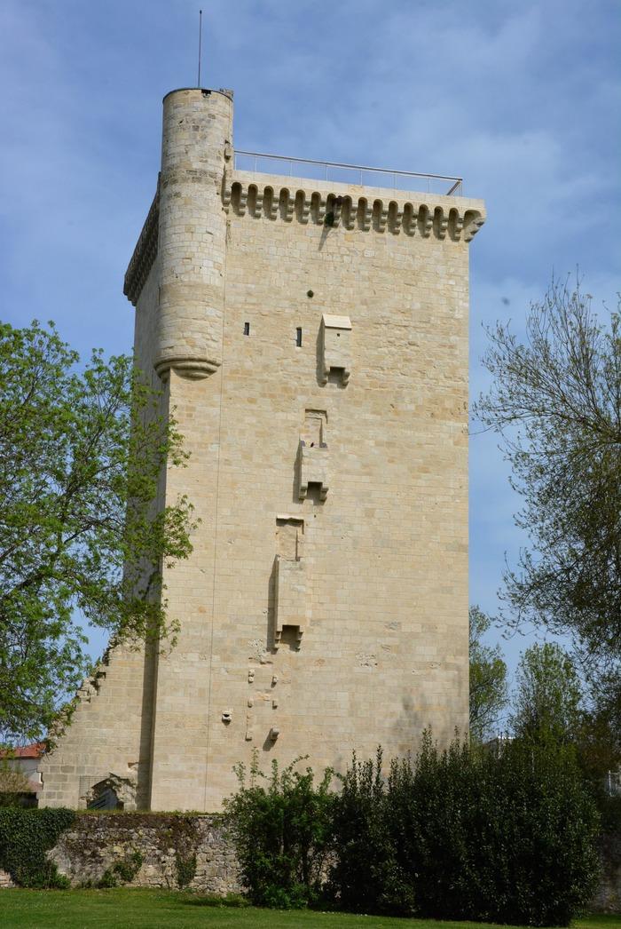 Crédits image : ©Tour médiévale, dite de l'honneur