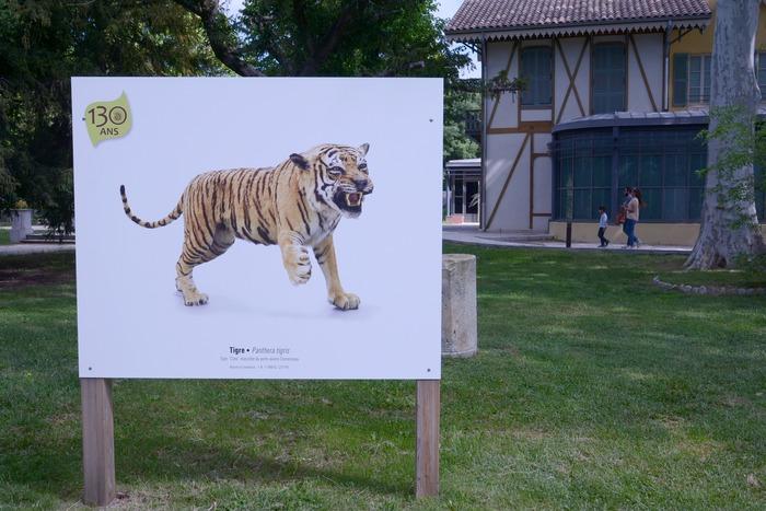 Journées du patrimoine 2018 - Exposition 130 ans d'objets s'exposent dans le jardin du Las.