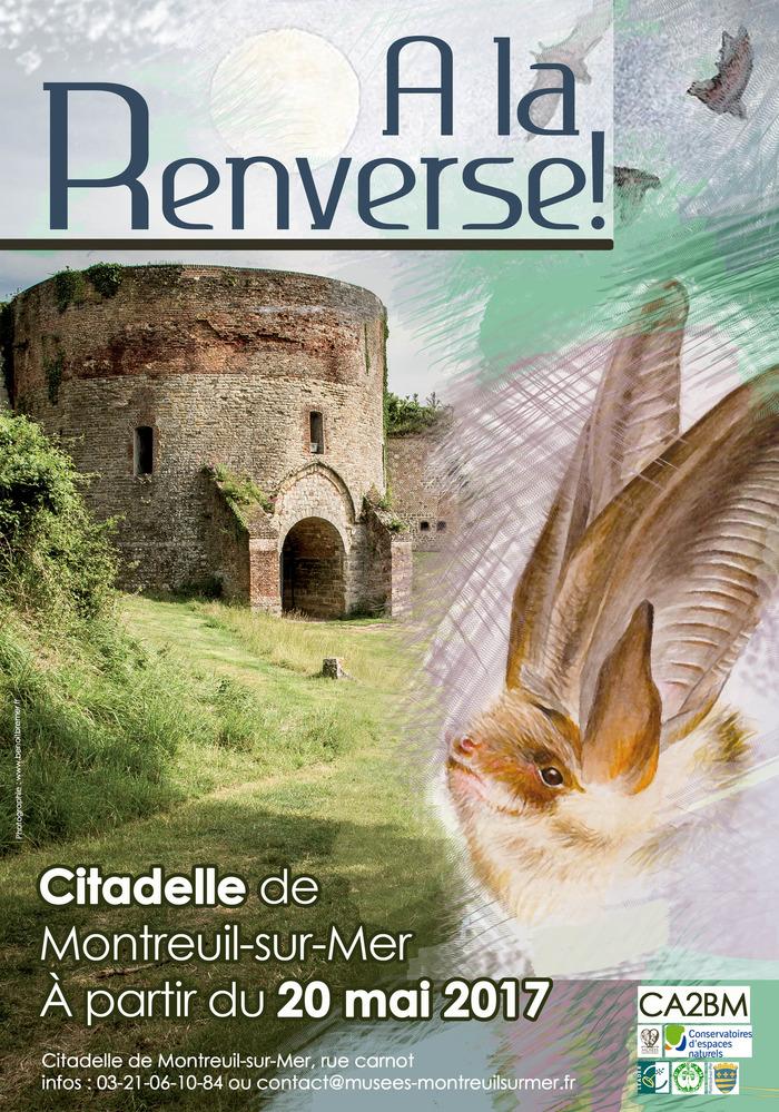 Crédits image : Service Musée / Citadelle et Benoit Bremer